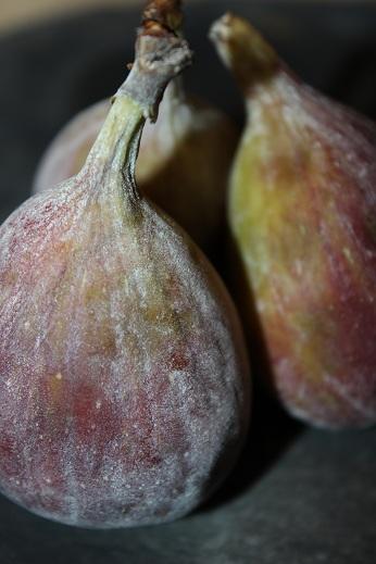 This week we're loving: figs